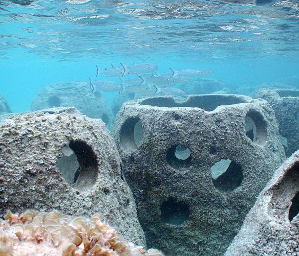 Paolo-Abbate foto - 03032017 ripopolamento ittico reef ball