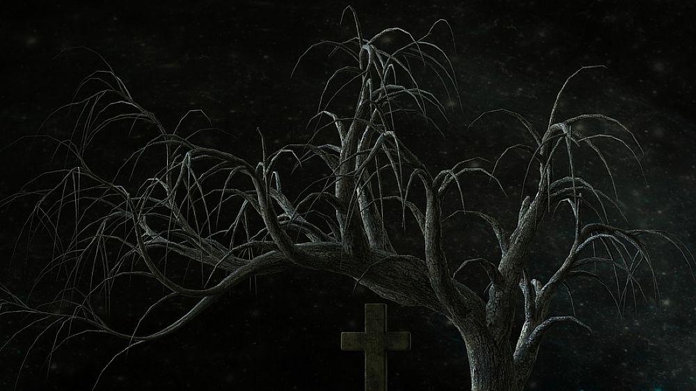 05012017 cimitero notte