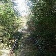 Vallo di DianoNotizie foto - 05082015 ferrovia arrugginita