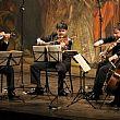 Spettacoli-Eventi foto - 07012017 quartetto archi vallo