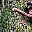 Ambiente foto - 10112016 olio di palma problema mondiale