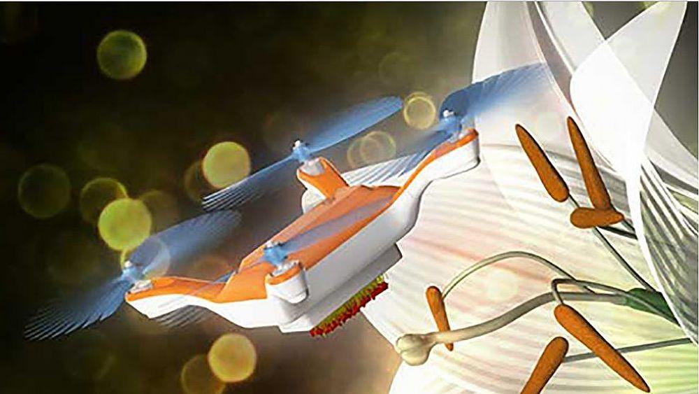 11022017 drone Tsukuba bee