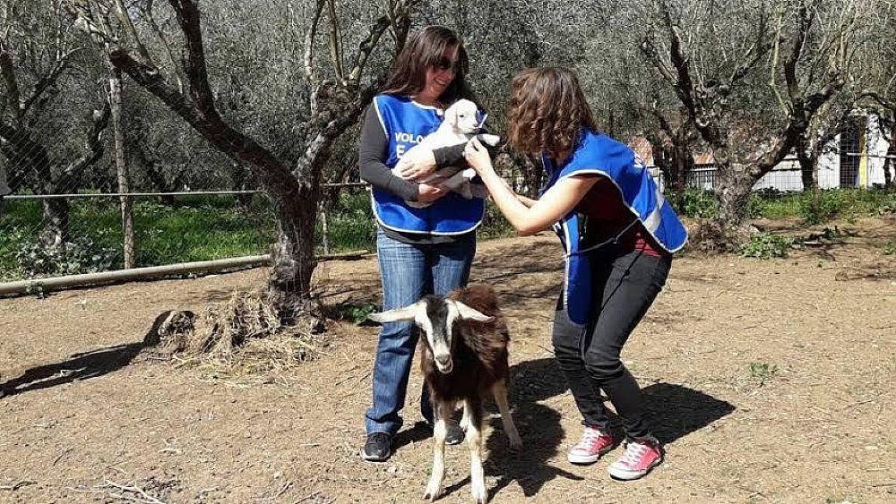 11042017 agnelli e volontari