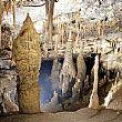 Le grotte di Castelcivita e l'uomo preistorico. Abitate dall'uomo di Neanderthal