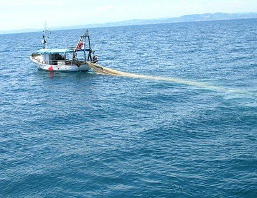 Sapri sequestrata una rete da pesca lunga 9 km cilento for Rete da pesca arredamento