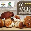Cilento Notizie foto - 16082018 piaggine fungo porcino