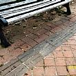 SapriNotizie foto - 17082017 sigarette a terra