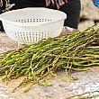 Spettacoli-eventi foto - 18042018 asparagi selvatici