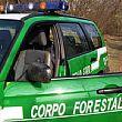18082014 corpo forestale