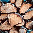 Comuni foto - 19022018 legna da ardere