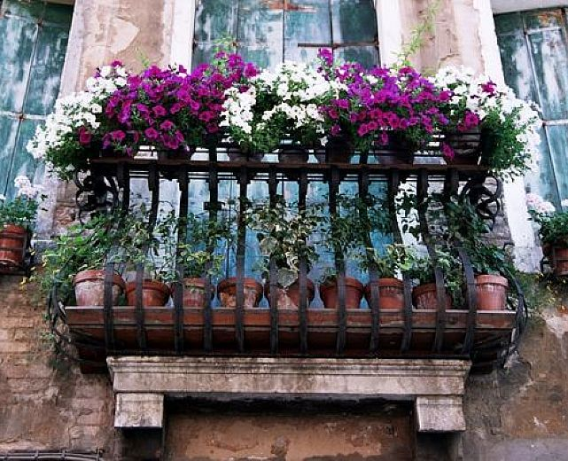 Borghi in Fiore, un premio per il balcone e il borgo più belli a ...