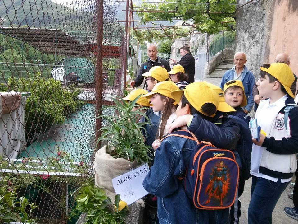 Un successo la prima edizione della fattoria didattica for Porte francesi della fattoria