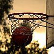 AgropoliNotizie foto - 20082015 Basket