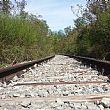 Vallo di DianoNotizie foto - 21072016 binari ferrovia dismessi