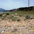 Progetto di rigenerazione di duna costiera a Vibonati