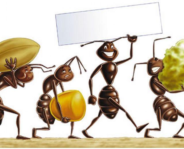 Sono arrivate le formiche in casa ecco i rimedi naturali per allontanarle - Formiche in casa ...