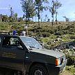 Cilento - Le ultime Notizie foto - 22092014 auto forestale