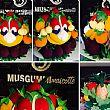 SalernoNotizie foto - 23042015 mascotte expo 2015