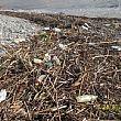 Cilento - Le ultime Notizie foto - 24012015 rifiuti fiume dopo pioggia