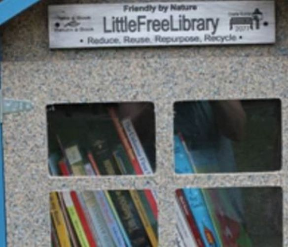 Marisa-Russo foto - 25032017 little free library