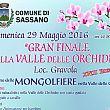 Vallo di DianoNotizie foto - 25052016 locandina valle delle orchidee