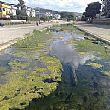 AgropoliNotizie foto - 27112015 fiume testene