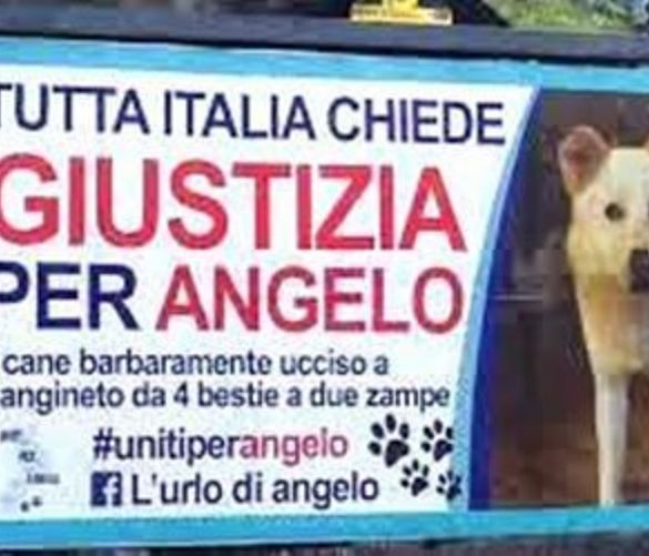 Paolo-Abbate foto - 28112016 giustizia per angelo