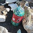 Ambiente foto - 29012018 bottglia piena di bastoncini di plastica cotton fioc