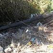 Ambiente foto - 29052017 rifiuti 1
