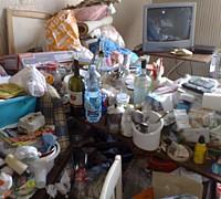 Salerno Anziana Aggredita In Casa Dal Suo Pit Bull La